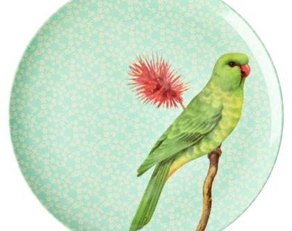 צלחת מלמין עיקרית ציפור רקע מנטה | RICE DK