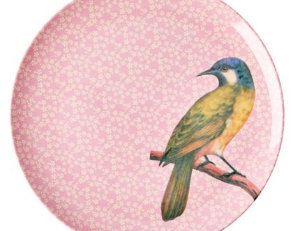 צלחת מלמין עיקרית ציפור רקע ורוד | RICE DK