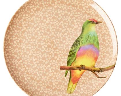 צלחת מלמין עיקרית ציפור רקע חום | RICE DK