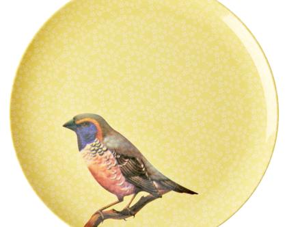 צלחת מלמין עיקרית ציפור רקע צהוב | RICE DK