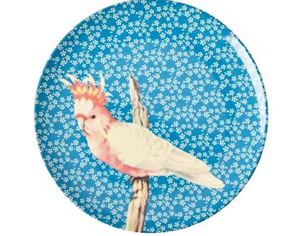 צלחת מלמין מנה ראשונה ציפור רקע כחול | RICE DK