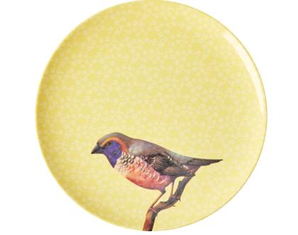 צלחת מלמין מנה ראשונה ציפור רקע צהוב | RICE DK