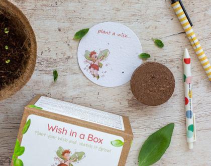 ערכת משאלות Wish in a Box