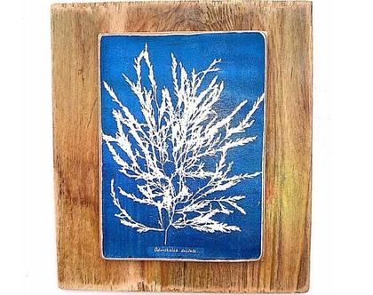 בוטאניקה, גלויית וינטג' על עץ ממוחזר |תמונה לסלון|ציור לבית|מתנה לאישה|סלון|עיצוב הבית|תמונה למטבח|