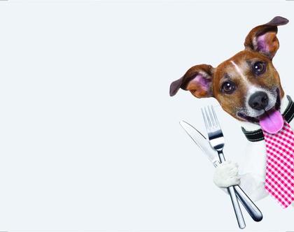 פלייסמטים מויניל - כלב מלצר(אפור בהיר)