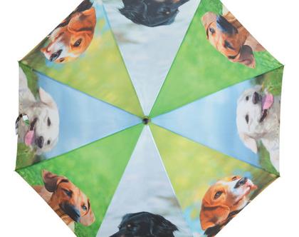 TP245 | מטרית כלבים | מטרייה מעוצבת | מתנה מקורית | מתנה ייחודית | חורף חם