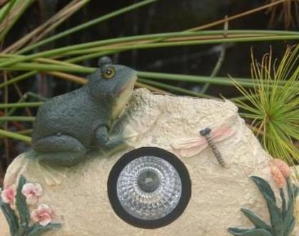 תאורה סולארית-צפרדע ושפירית