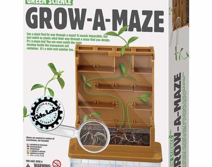 מדע ירוק- צמיחה במבוך