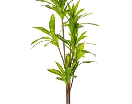 """צמח מלאכותי דרצנה למון ליים 170 ס""""מ"""
