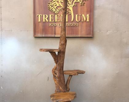 מעמד ייחודי מעץ טיק