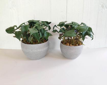 צמח מלאכותי בכלי דמוי בטון קטן/גדול