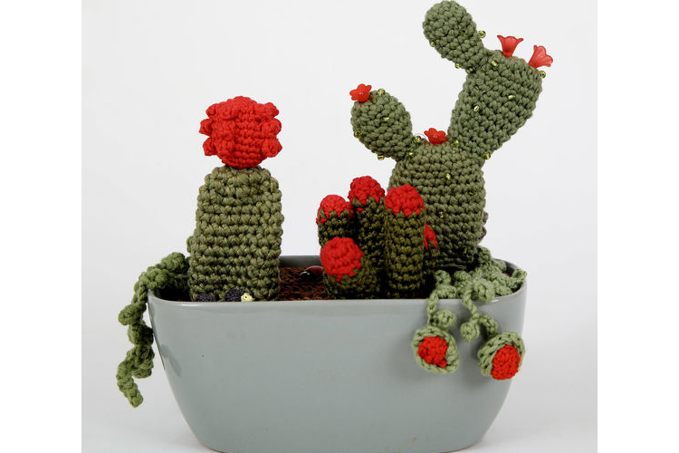 קקטוס סרוגים, סקולנטים ופרחים באדום בתוך אדנית מקרמיקה, מבריקה בתוספת מיניאטורות.