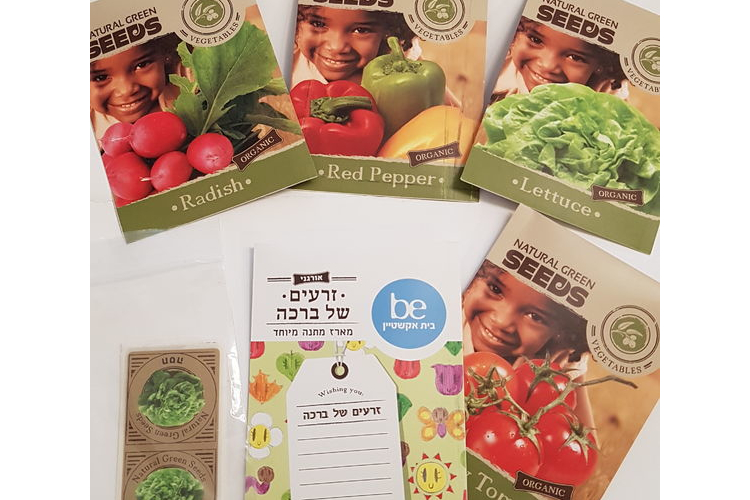 הגינה שלי | ערכה המכילה זרעי ירקות | זרעים | מתנה לחג | זרעים