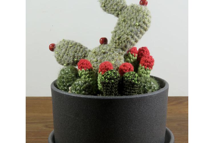 צבר סרוג בעבודת יד, בתוך אדנית עגולה מיוחדת, מקרמיקה עם תחתית ועוד סקולנטים עם פרחים באדום