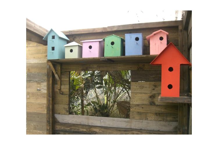תאי קינון והטלה לציפורים