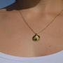 שרשרת זהב צדף, שרשרת צדף, שרשרת צדף זהב, שרשרת עדינה, שרשרת מיוחדת, שרשרת מתנה, שרשרת זהב, שרשרת השראה