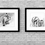 זוג תמונות ממוסגר | תמונות מעוצבות | תמונות לבית | פילים