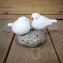 זוג ציפורי הסלע