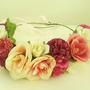 זר לראש | משי | זר יומולדת | זר פרחים | עיטור ראש | כתר | חגיגה | יום הולדת| קישוט | ורוד | פונטש| | סגנון כפרי | מלאכותי | ורדים